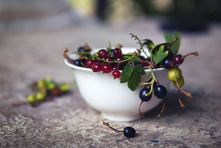 Still life with currant 1