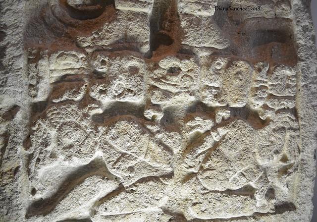 Fragmento de una Estela de Dzilam  Gonzalez Yucatan.