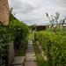 Scotland's Gardens Craigintinney Telferton July 2018 -4