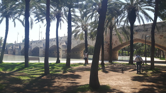 An old arch bridge with a pond and palm trees in Turia Riverbed, Valencia, Spain.