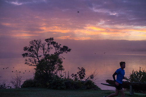 sunrise purple colors rotorua lake lakerotorua newzealand nz fuji fujifilm fujifilmxt2 50mm 50mmlens runner man dawn goodlight water
