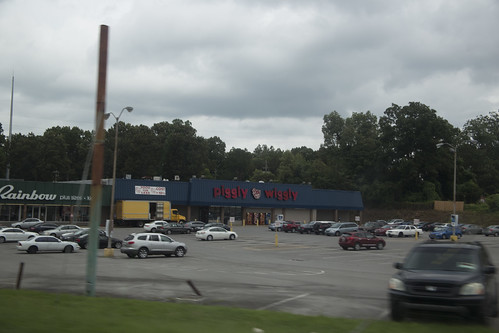 piggly wiggly_1439