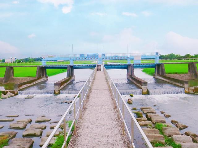 安農溪分洪堰風景區 (22)