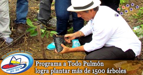 Programa a Todo Pulmón logra plantar más de 1500 árboles