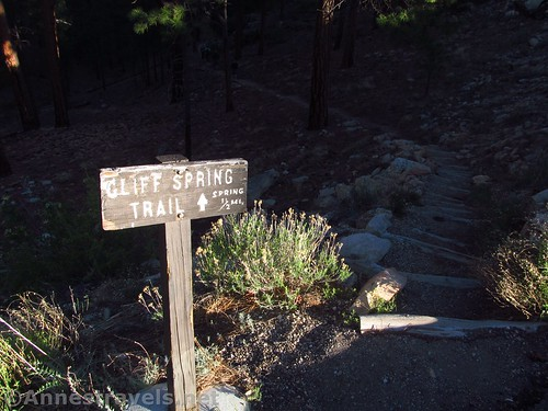 Cliff Springs Trailhead - the beginning of the route to Honan Point on the North Rim of Grand Canyon National Park, Arizona
