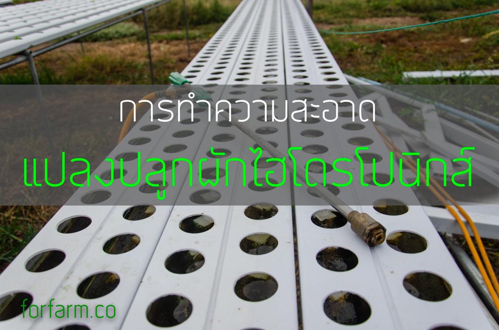 การทำความสะอาด รางปลูกผักไฮโดรโปนิกส์