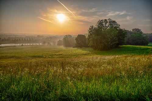 pentax2470f28edsdm cy365 plants pentaxlenses time iowa weather prairie hdr 365the2018edition scenery 040718 equipment 365challenge technicalphotography fog pentaxk1 field squawcreekpark nature hot trees locations marion pentax morning sunrise day185365 photography foggy july linncounty unitedstates camera 3652018 fields us
