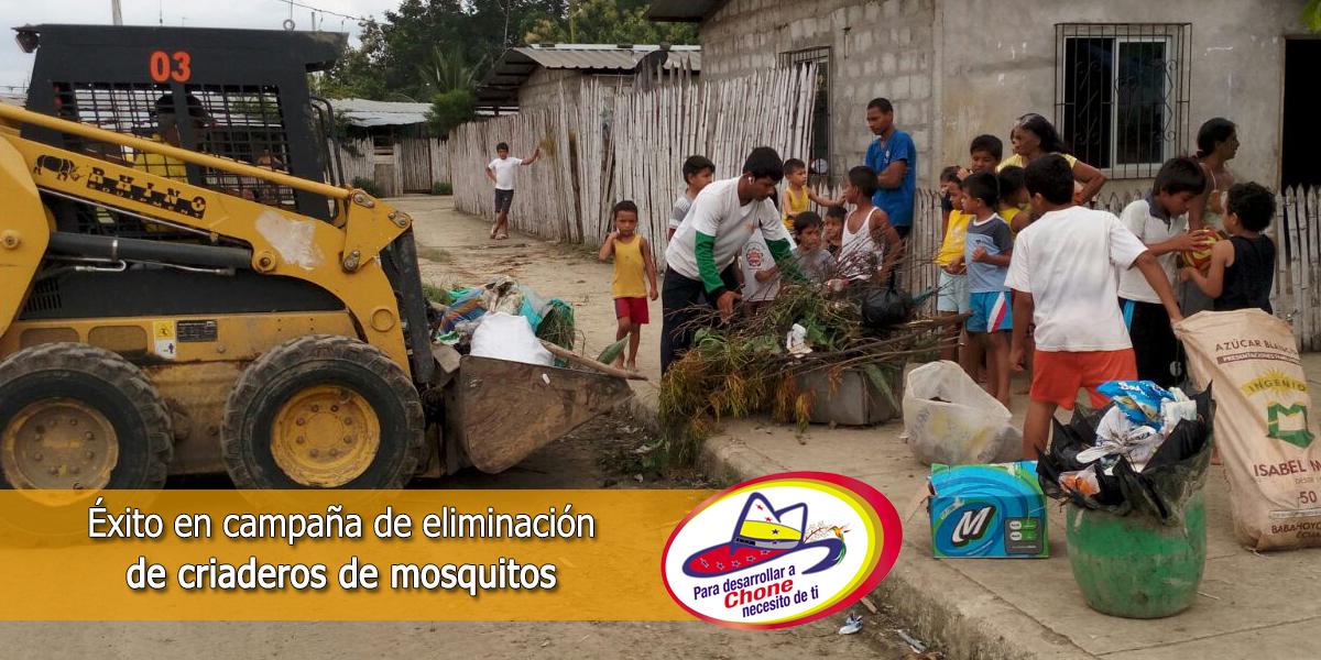 Éxito en campaña de eliminación de criaderos de mosquitos