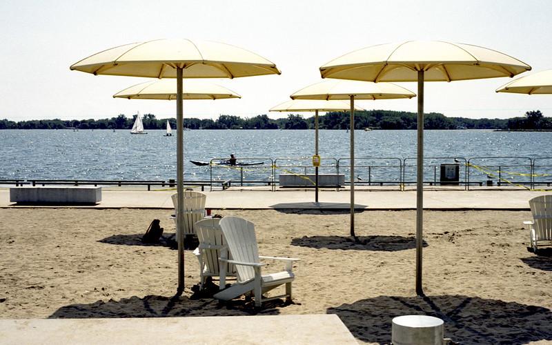 Yellow Umbrellas of Toronto