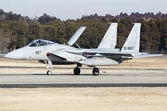 13. JASDF F15J