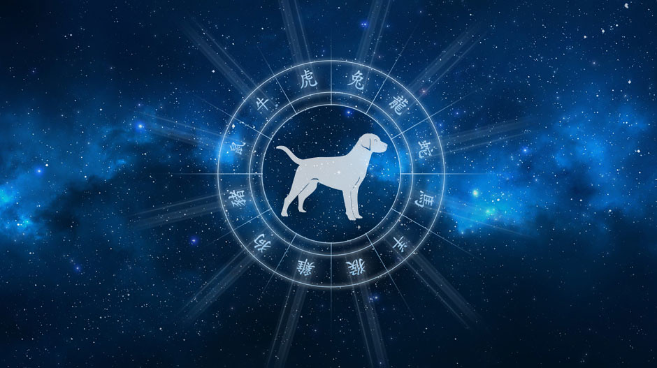 Horoskop chiński Pies