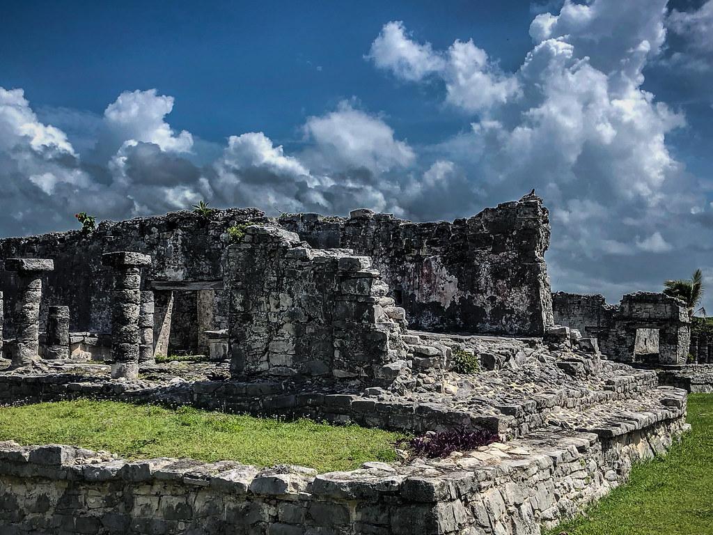 Spot the sun-bathing iguana