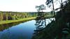 Nemunas River (26)