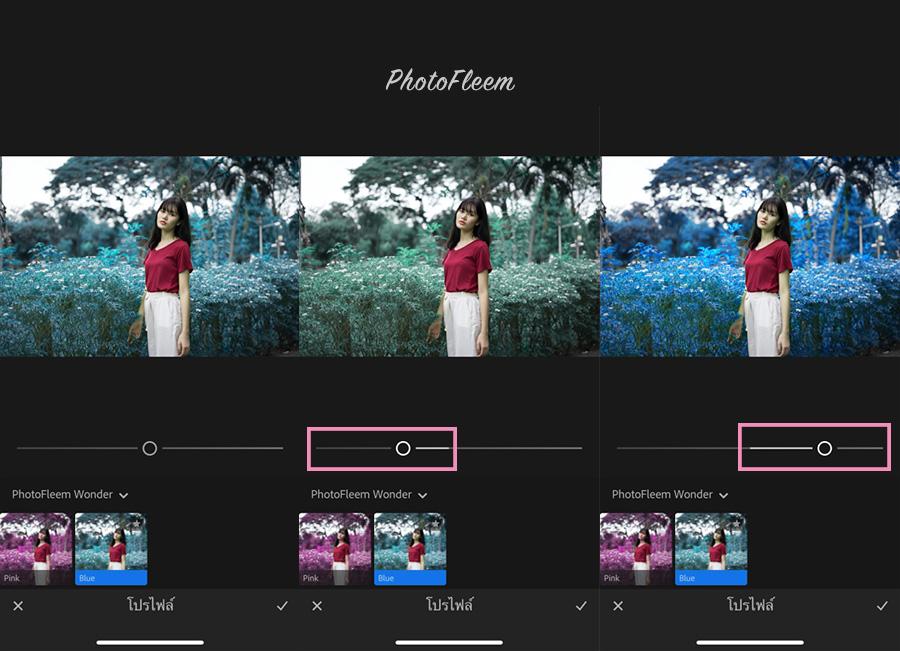 PhotoFleem-Wonder-basic03