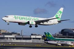PH-HZE | Transavia Airlines | Boeing B737-8K2(WL) | CN 28377 | Built 1
