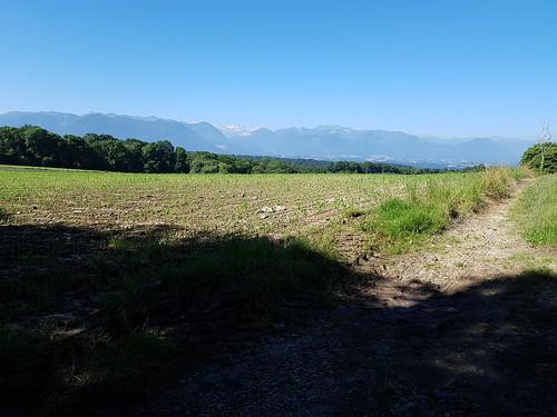 La chaîne des Pyrénées qui nous accompagne tout au long du cheminement sur notre droite
