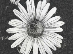 garden_menagerie