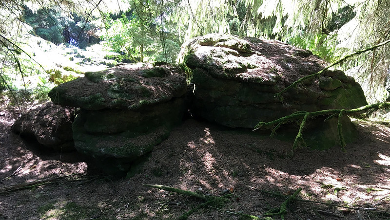 Rough Tor (Burrator)