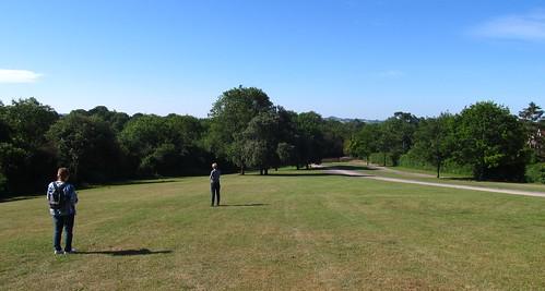 Heuvel achter Wookey Hole Hotel: konijntjes en Glastonbury Tor op de achtergrond