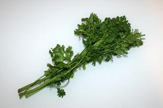 15 - Zutat frischer Koriander / Ingredient fresh cilantro
