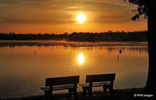 sunrise florida sun water reflection benches tree trees lake lakebrown kissimmee yellow sky clouds amber canon t1i slr outdoor nature landscape flickr