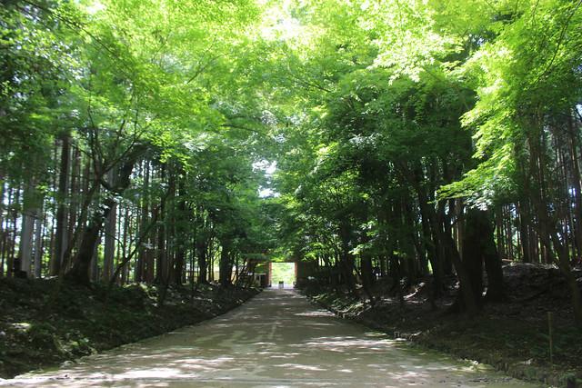 daigoji017