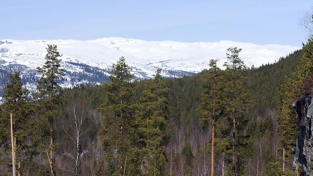 Mountain 1.4, Telemark, Norway
