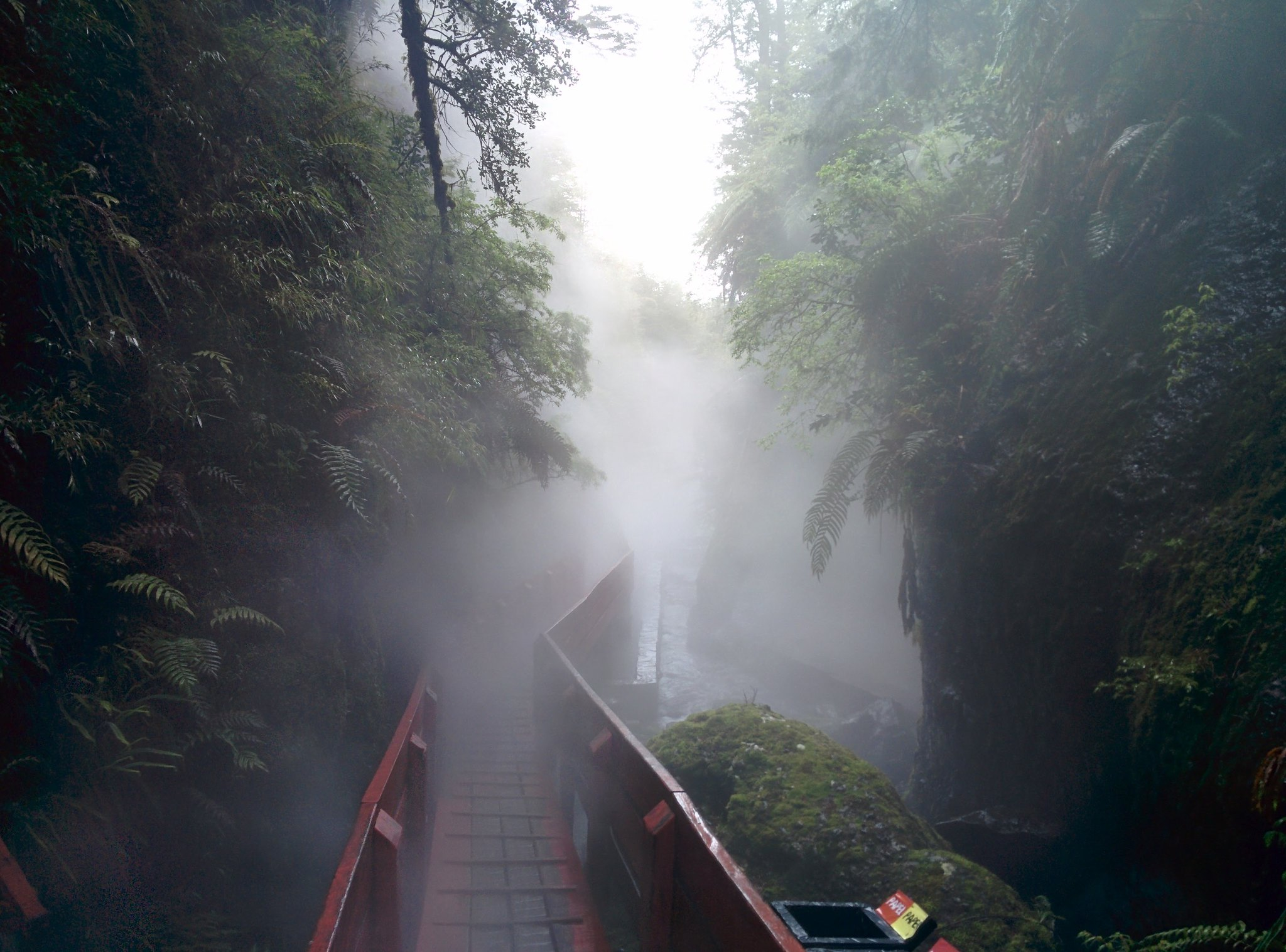 The misty walkway leading away from the waterfall