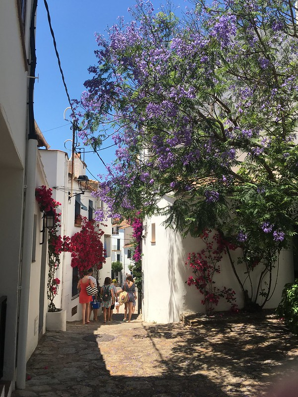 monday, bougainvilla, the views, calella de palafrugell