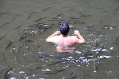 Thailand 2013 - 13.Tag, Cha Am, Pa la u Wasserfall