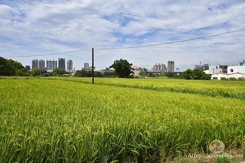 新竹一日遊DAY2-38