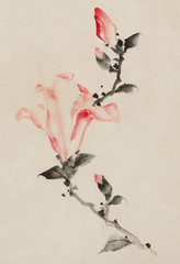 Large Pink Blossom on a Stem with Three Additional Buds by Katsushika Hokusai published between 1830 and 1850, an illustration of a pink blossom isolated. Digitally enhanced from our own original edition.