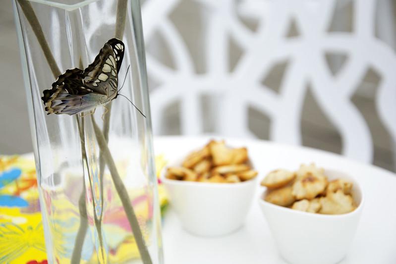Een Moment met Vlinders