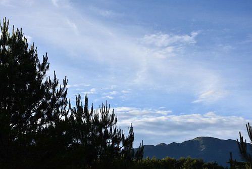 福壽山農場-藍茵湖步道