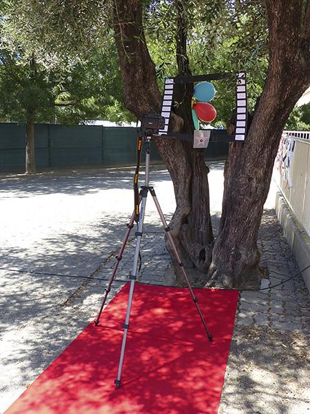 photobooth dans les arbres