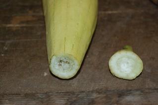 esponja-vegetal-cosecha-almacenamiento_7