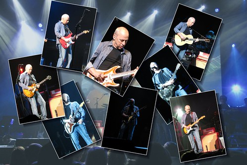 Eight guitars... no picks | by PhotoSpills Collages