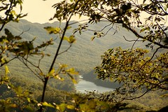 KY100_9512 Fern Lk Thru the Trees Ft McCook