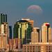 Strawberry Moon, Edmonton