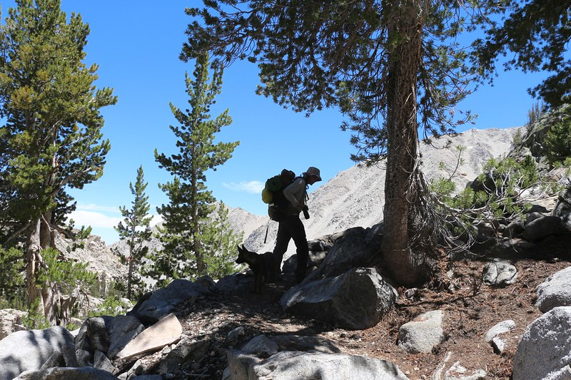 We've been climbing all day but it's not over yet as we continue on toward Sam Mack Meadow