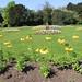 Hyland Hall gardens