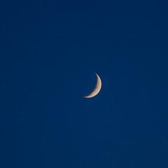 20180716-Crescent Moon