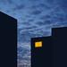 insomnia by Bluesrose