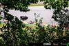 2018-MGP-Syahrin-Germany-Sachsenring-017