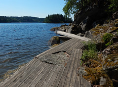 Wooden dock on a lake in Sweden