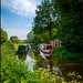 Summer Towpath