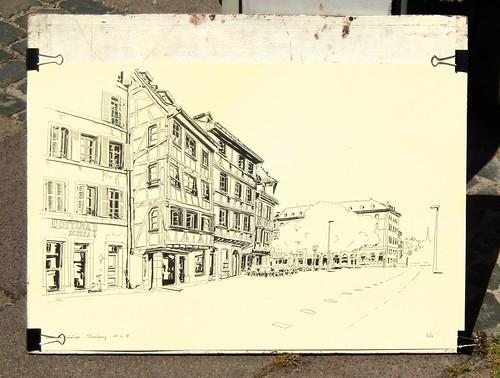 Lézard au soleil n°22 - Quai des Bateliers - Strasbourg