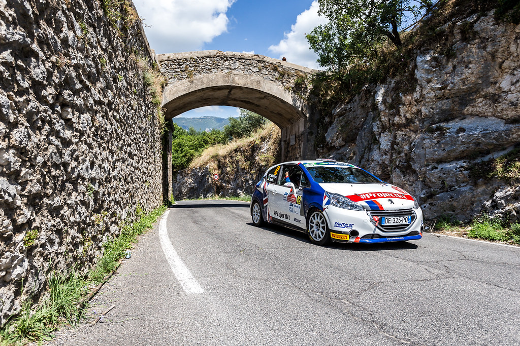 42 MUNNINGS Catie(gbr), STEIN Anne Katharina (deu), Peugeot 208, action during the 2018 European Rally Championship ERC Rally di Roma Capitale,  from july 20 to 22 , at Fiuggi, Italia - Photo Thomas Fenetre / DPPI