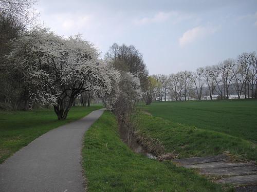2010-04-20_16.36_35