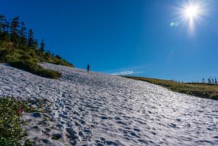穏やかに雪渓を登り苗場山へ